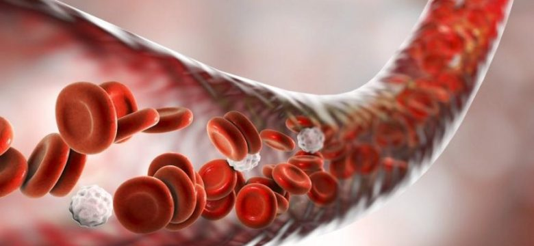 Hemofili Nedir? Hemofili Hakkında Bilgiler