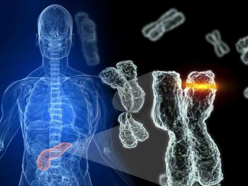 Rejeneratif Tıp Tedavilerinde Yükseliş